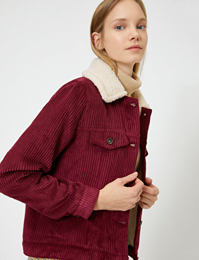 Neck Detailed Coat