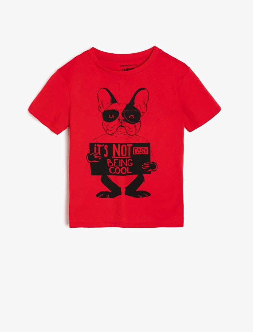 1b1c1f0b13cb4 Erkek Çocuk Tişört Modelleri ve Fiyatları 2019 | Koton