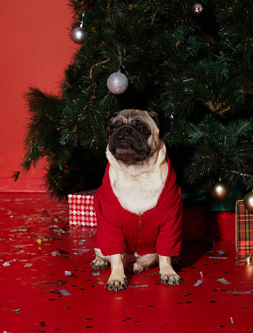 Pamuklu Kapüşonlu Köpek Sweatshirt