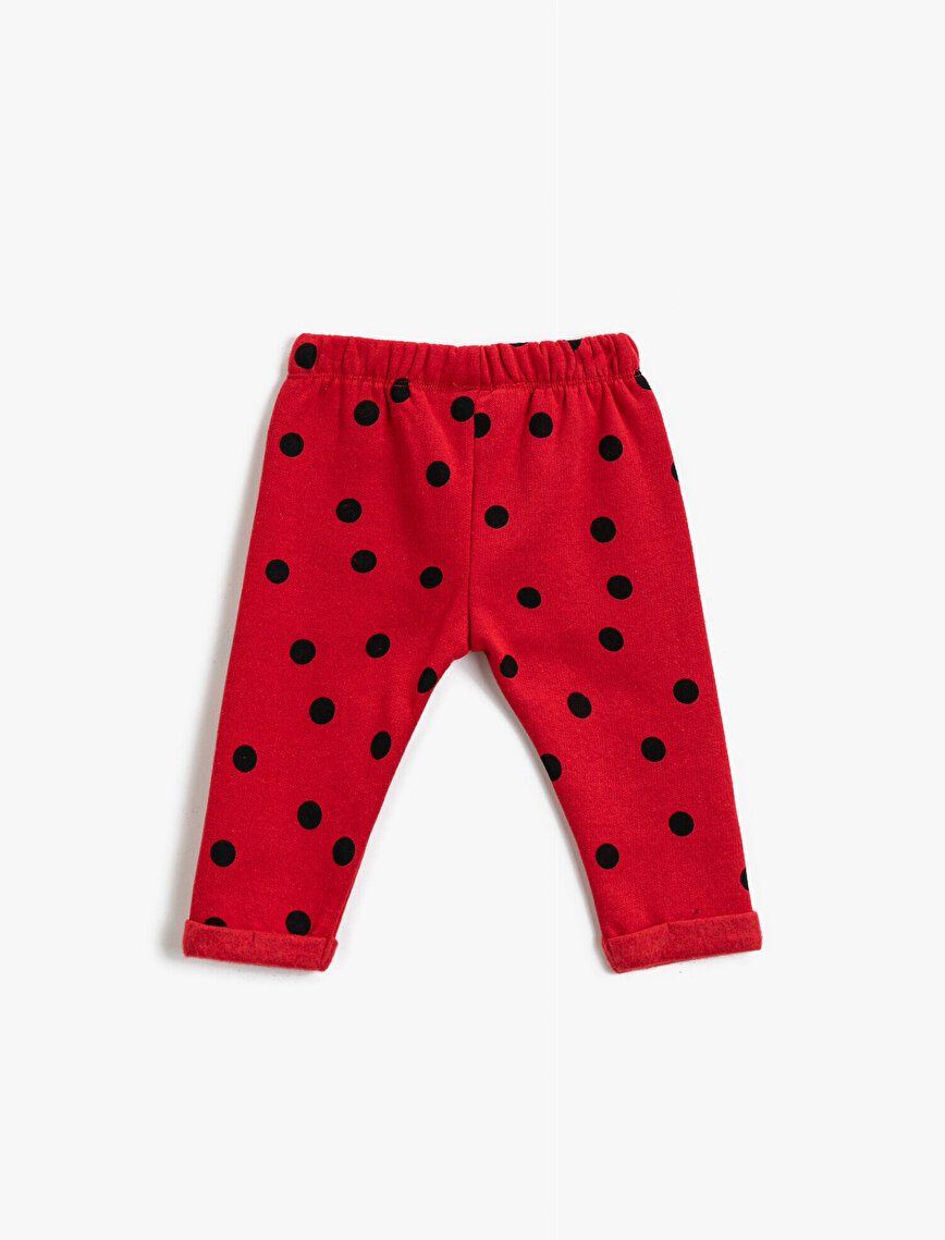 Minnie Mouse Licensed Printed Dotted Medium Rise Jogging Pants