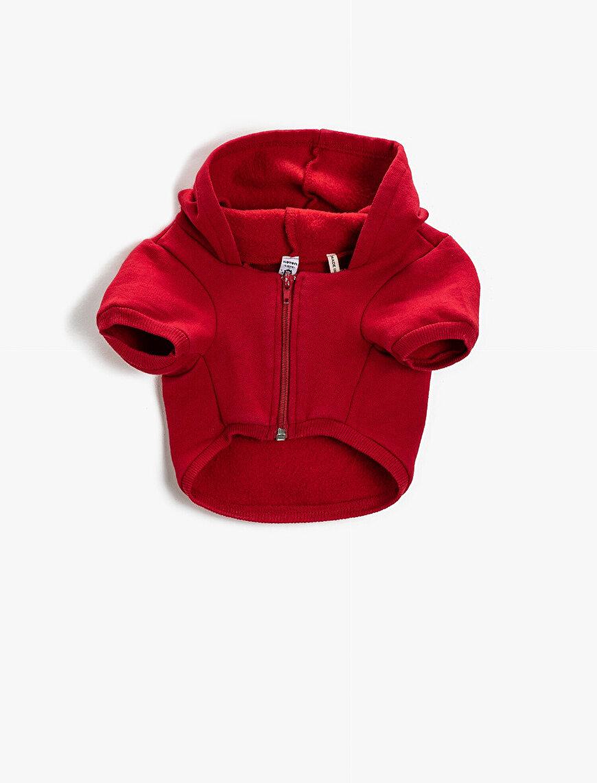 Love Dog Kapüşonlu Fermuarlı Sweatshirt