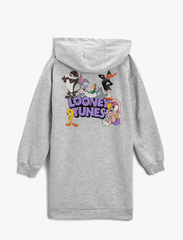 Looney Tunes Licensed Printed Hoodie Dress